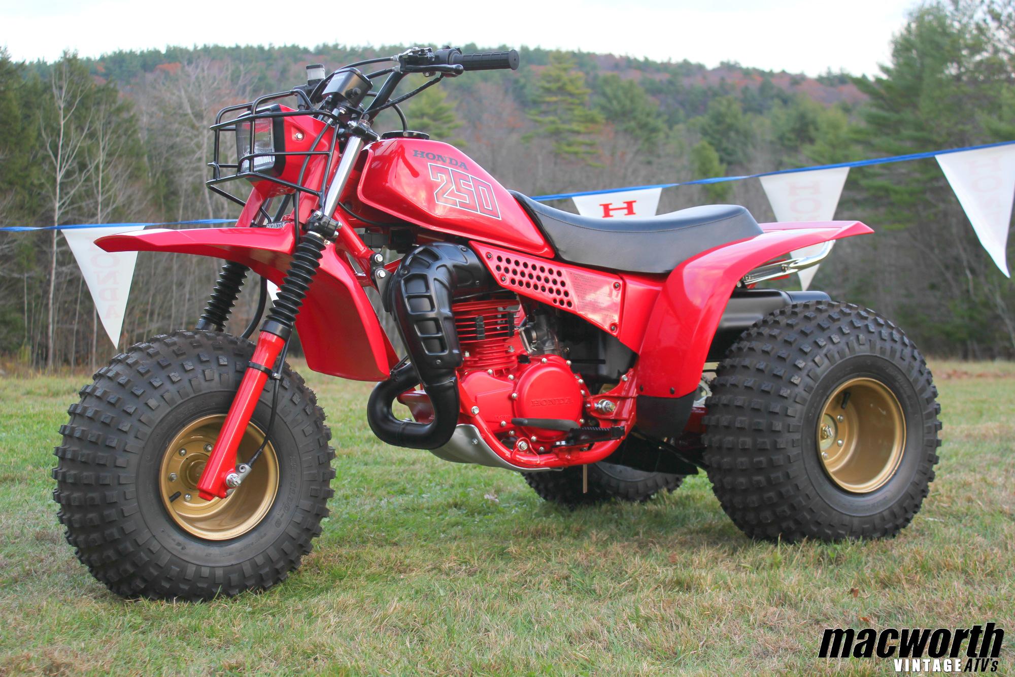 Ignition Coil Honda ATC250 ATC 250R 3 Wheeler Trike 1981 1982 1983 1984 NEW